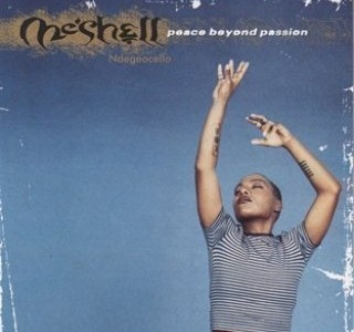 meshell-ndegeocello-peace-beyond-passion